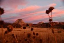 黄昏草地唯美风景图片大全