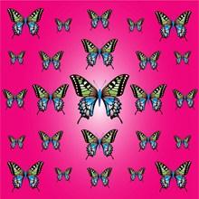 蝴蝶纹理背景图片素材
