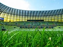 绿荫足球场图片素材
