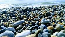 海岸鹅卵石图片