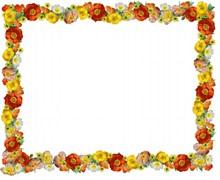 罂粟花边框精美图片