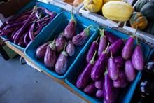 市场紫色茄子图片下载
