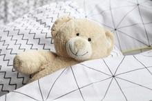 泰迪毛绒玩具精美图片