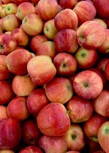 咖喱果苹果精美图片