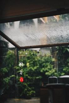 秋分时节雨纷纷高清图片