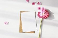 花卉信封淡雅背景高清图片
