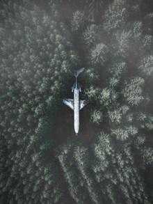 丛林中的飞机图片下载