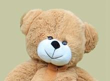 毛绒玩具熊公仔图片