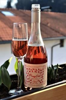 桃红起泡酒图片素材