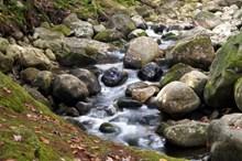 山间溪流水精美图片