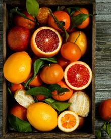 新鲜橙子高清摄影图片