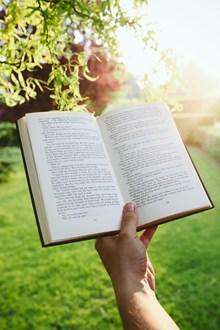 书与阳光唯美意境精美图片