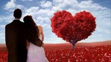 唯美爱情情侣高清图片素材