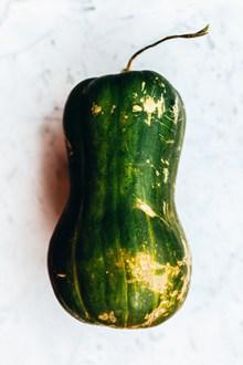 绿皮南瓜高清图片