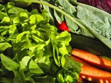 各种新鲜蔬菜 各种新鲜蔬菜大全图片