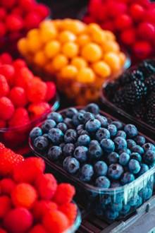 新鲜彩色树果果实图片