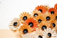 手工折纸花卉图片