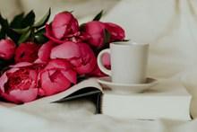 书籍和郁金香图片