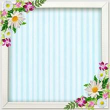 正方形花卉装饰相框高清图