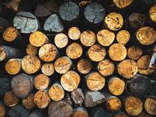 一堆原木材图片素材