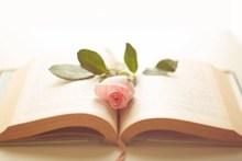 唯美书籍小清新非主流精美图片