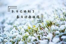 冬天唯美文字图片素材