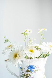 白色菊花插花小清新图片下载