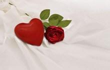 情人节红色爱心玫瑰精美图片
