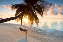 美女海边度假照片图片大全