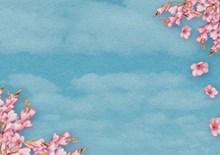 唯美花卉蓝色淡雅背景图片