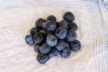 黑色蓝莓果子图片下载