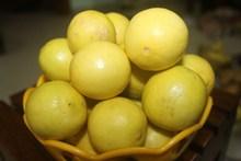 黄色柠檬果子高清图