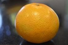 橙色橘子特写图片下载