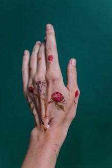 手背鲜花纹身图片大全
