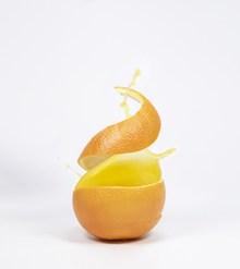 橘子皮创意图片大全