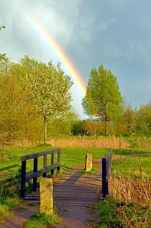 自然彩虹风景高清图