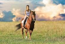 美女骑马精美图片