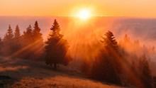 清晨唯美日出图片大全