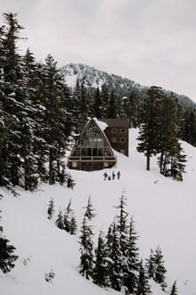 冬季雪地雪屋雪松高清图片