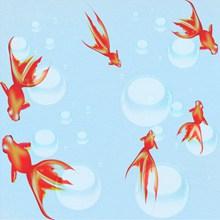 锦鲤背景素材图片