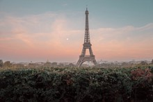 清晨埃菲尔铁塔高清图