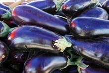 紫色茄子蔬菜图片大全