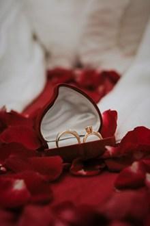 玫瑰花瓣中的对戒图片下载