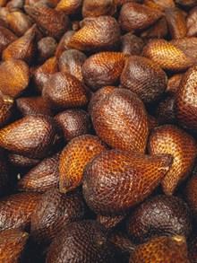 印尼蛇皮果高清图片
