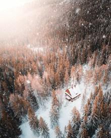 冬季树林小木屋雪景高清图