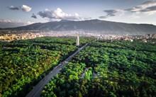 城市绿化带图片素材