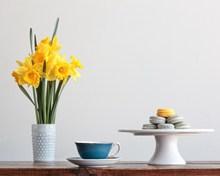 小清新美食花卉图片