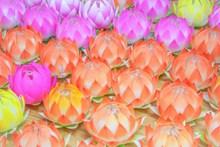 中秋彩色莲花灯图片