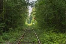森林废弃铁路高清图