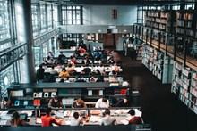 学生在图书馆看书学习图片下载